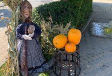 Photo of Jesenná výstava ovocia a zeleniny na námestí