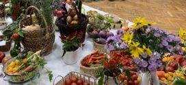 Výstava ovocia a zeleniny 2019